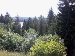 Деревня Навалихины